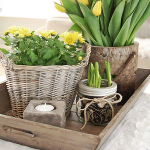 20-reasons-to-buy-beautiful-tray20-1