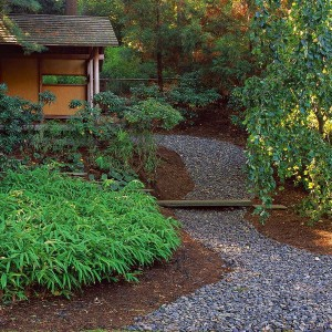 how-to-create-no-fuss-garden3-3