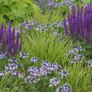 how-to-create-no-fuss-garden4-4