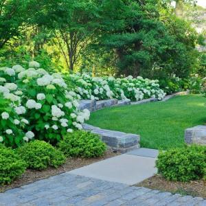 how-to-create-no-fuss-garden5-1