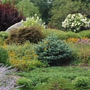 how-to-create-no-fuss-garden5-2