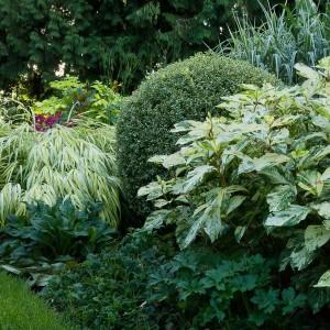how-to-create-no-fuss-garden5-4