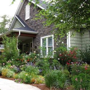 how-to-create-no-fuss-garden6-3