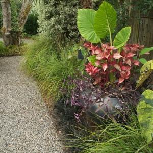 how-to-create-no-fuss-garden7-2