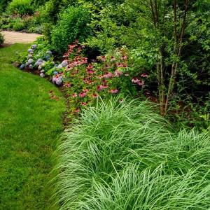 how-to-create-no-fuss-garden7-3