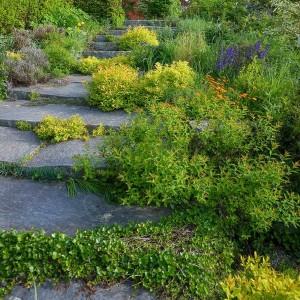 how-to-create-no-fuss-garden8-3