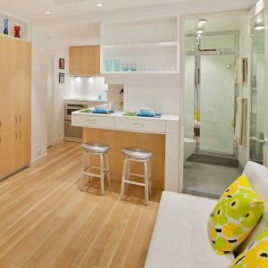tiny-manhattan-studio-apartment-32-sqm4
