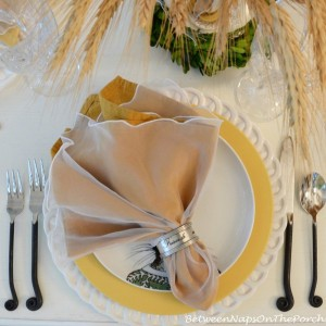 fall-inspired-table-setting-by-bnotp-1-issue1-5