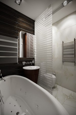apartment-projects-n155-23bath
