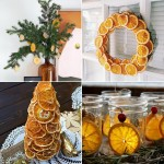citrus-slices-new-year-deco
