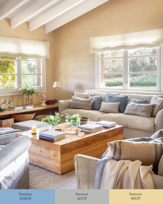livingroom-palette-60-30-10-rule3