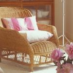 add-southern-charme-in-livingroom-details2.jpg
