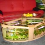 aquarium-coffee-table3.jpg