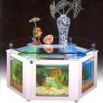 aquarium-coffee-table4.jpg