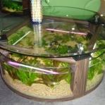 aquarium-coffee-table5.jpg
