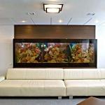 aquarium-in-home-interior24.jpg