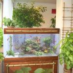 aquarium-in-home-interior35.jpg