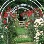 arbor-and-archway-in-garden1-23.jpg