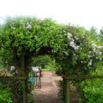 arbor-and-archway-in-garden2-1.jpg