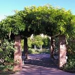 arbor-and-archway-in-garden2-3.jpg