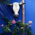 artist-homes-isabelle-tuchband5-11.jpg