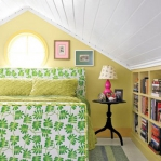 attic-space-ideas-using-incline11.jpg