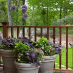 balcony-flowers-ideas2-9.jpg