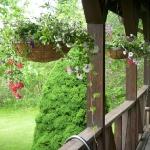 balcony-flowers-ideas3-1.jpg
