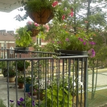 balcony-flowers-ideas3-3.jpg