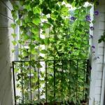 balcony-flowers-ideas4-1.jpg