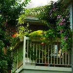 balcony-flowers-ideas4-2.jpg