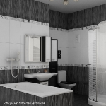 bathroom-contrast-black-and-white3-2.jpg