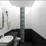 bathroom-contrast-black-and-white7-2.jpg