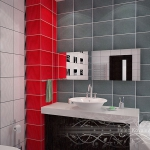 bathroom-contrast-rwb5.jpg