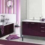 bathroom-delpha-evolution1.jpg