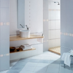 bathroom-in-blue-combo-misc1.jpg