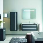 bathroom-in-blue-furniture-and-sanity3.jpg
