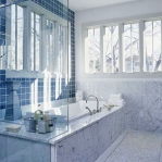bathroom-in-blue-muted3.jpg
