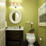 bathroom-in-chartreuse4.jpg