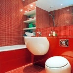bathroom-in-red-floor-and-decor4.jpg