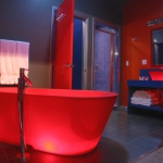 bathroom-in-red-sanity5.jpg