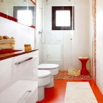bathroom-in-white-plus-other-colors2-1.jpg