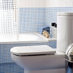 bathroom-in-white-plus-other-colors8-3.jpg