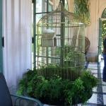 bird-cage-decoration3-11.jpg