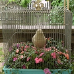 bird-cage-decoration3-14.jpg