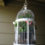 bird-cage-decoration3-15.jpg