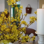 blooming-branches-spring-table-setting2-15.jpg