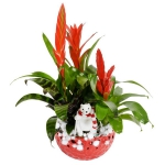 blooming-plants-new-year-decoration1-2