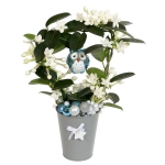 blooming-plants-new-year-decoration2-6