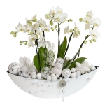 blooming-plants-new-year-decoration4-5